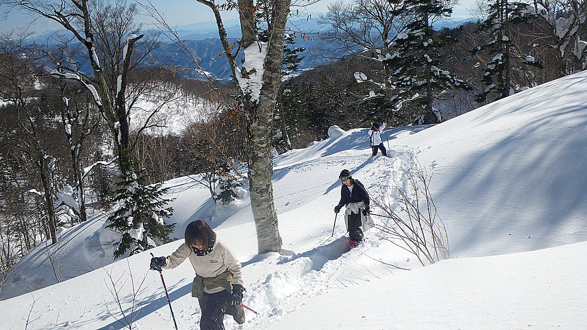 Backcountry in Hakuba
